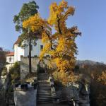 Pohled z terasy ke kapli